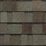 TruDefinition Duration STORM shingles