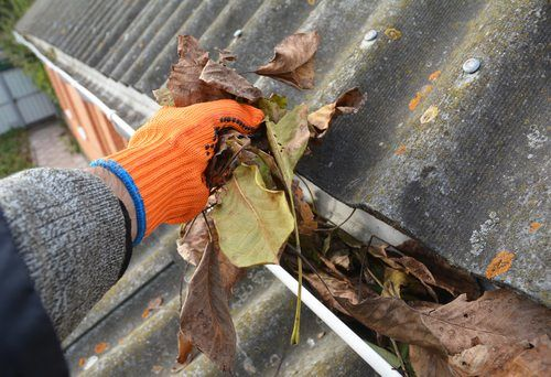 A hand with an orange glove removing dead leaves from gutters.